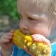 nuevas líneas de maíz gracias a la tecnología