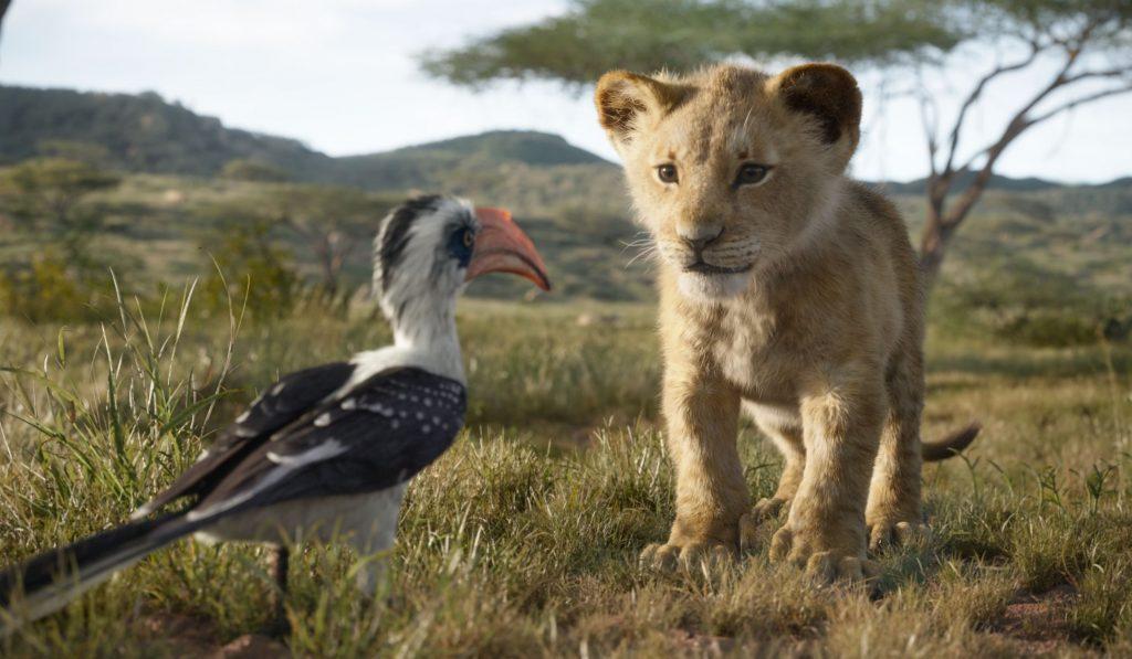 Simba y Zazú